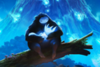 Ori and the Will of the Wisps: Offiziell angekündigt-ori.png