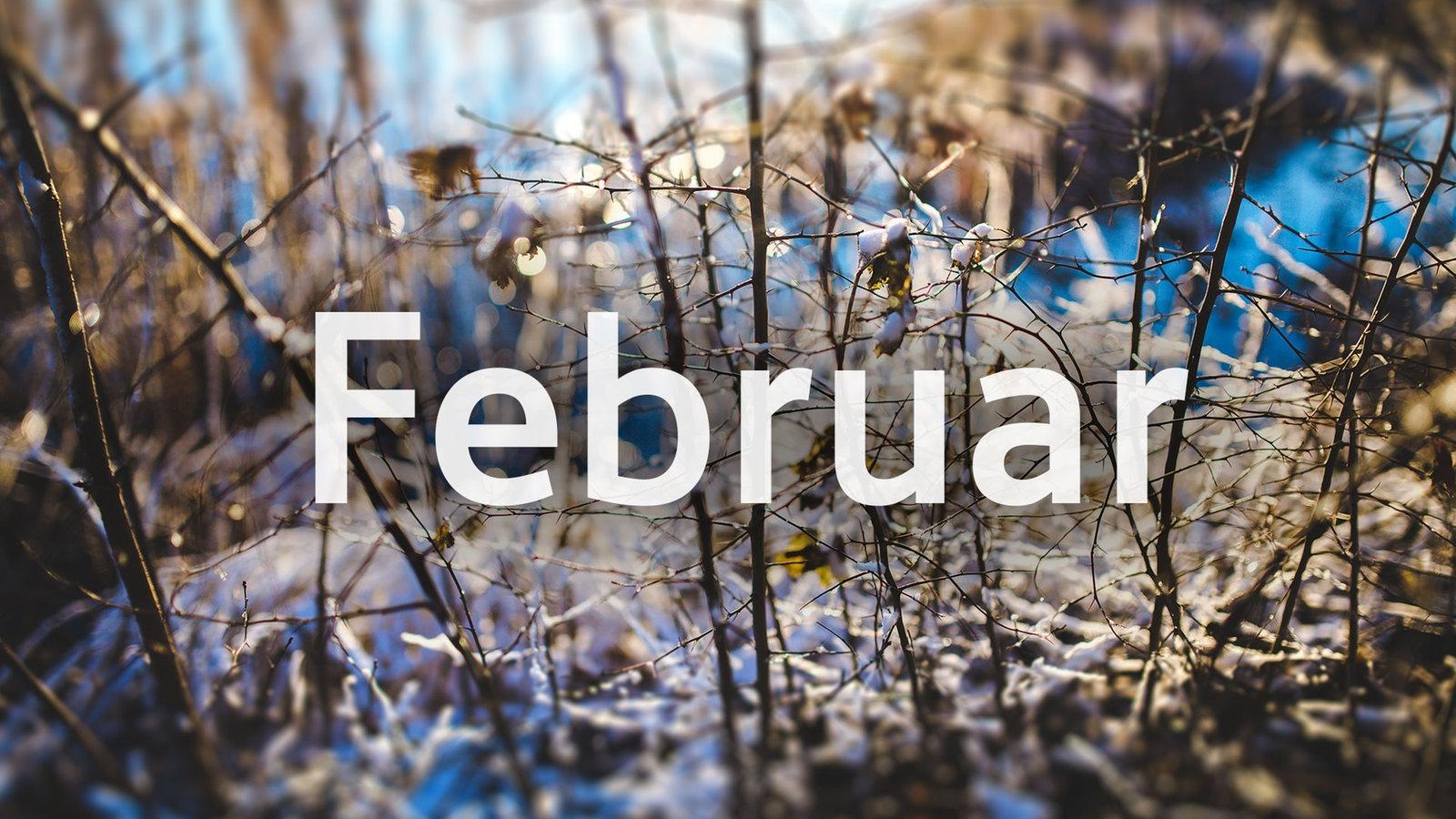Spiele-Neuerscheinungen ➡️ Februar 2019